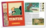 Livre tresors de Tintin