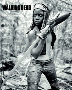TheWalkingDeadMichonne1AlbumComics