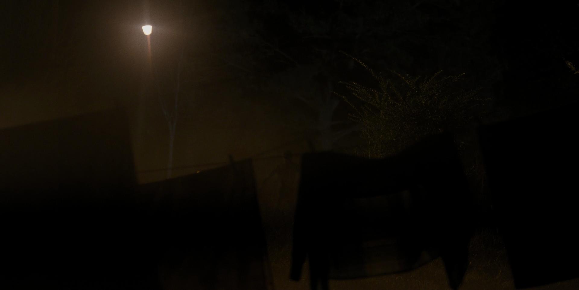 Stranger Things - Episode 1 - Ombre menaçante